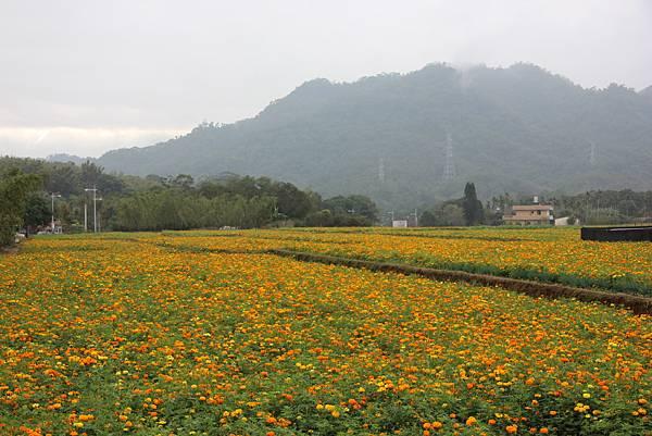 1226大芁芎古道上溪州山  (1).JPG