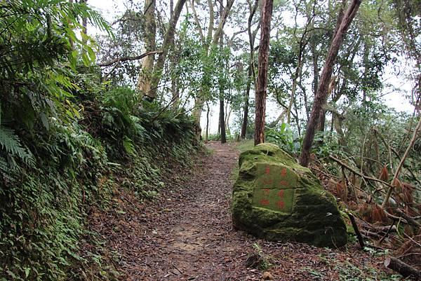 1226大芁芎古道上溪州山  (12).JPG