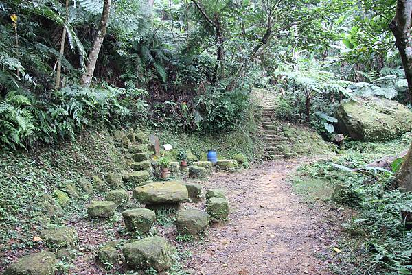 1226大芁芎古道上溪州山  (14).JPG
