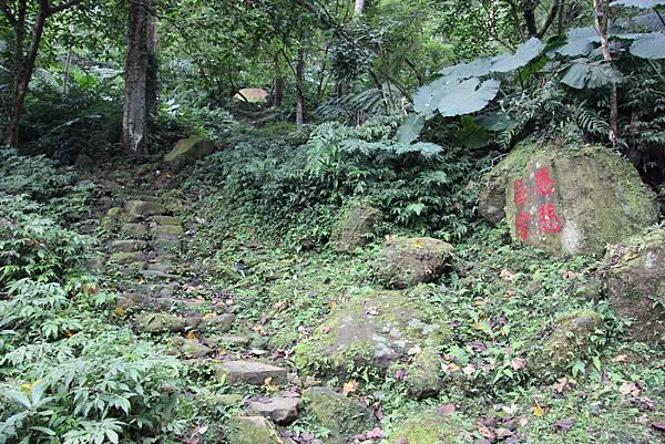 1226大芁芎古道上溪州山  (15).JPG