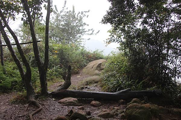 1226大芁芎古道上溪州山  (42).JPG