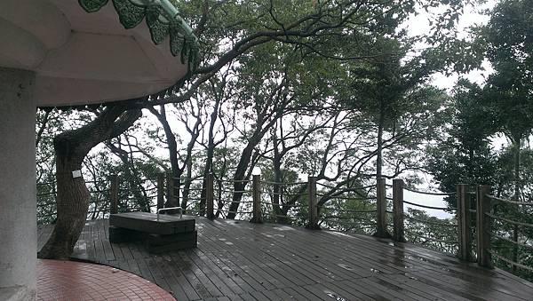 0103新店小獅頭山 (8).jpg