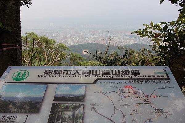 0220林大同山、青龍嶺、大棟山 (12).JPG