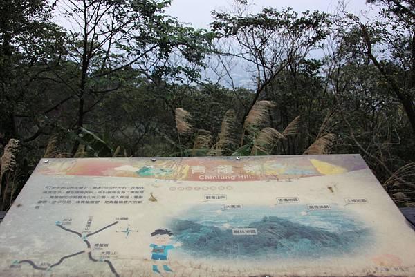 0220林大同山、青龍嶺、大棟山 (23).JPG