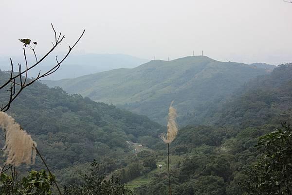 0220林大同山、青龍嶺、大棟山 (52).JPG