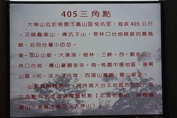 0220林大同山、青龍嶺、大棟山 (63).JPG