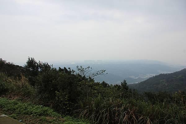 0220林大同山、青龍嶺、大棟山 (64).JPG