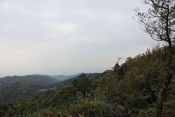 0220林大同山、青龍嶺、大棟山 (65).JPG