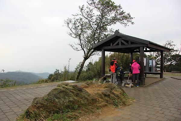 0220林大同山、青龍嶺、大棟山 (66).JPG