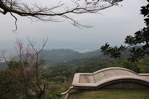 0220林大同山、青龍嶺、大棟山 (73).JPG