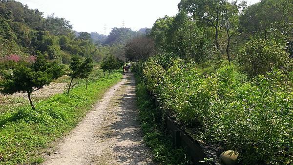 0228清水岩步道 (8).jpg