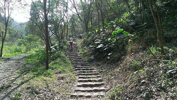0228清水岩步道 (12).jpg