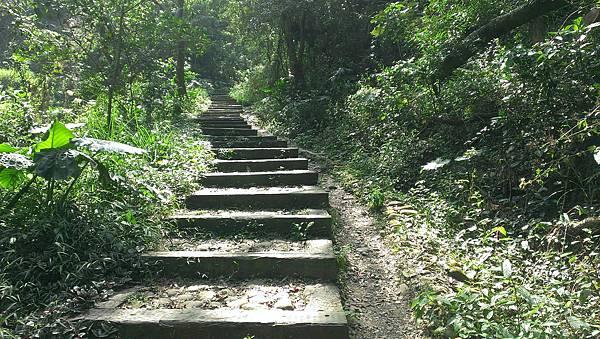 0228清水岩步道 (15).jpg
