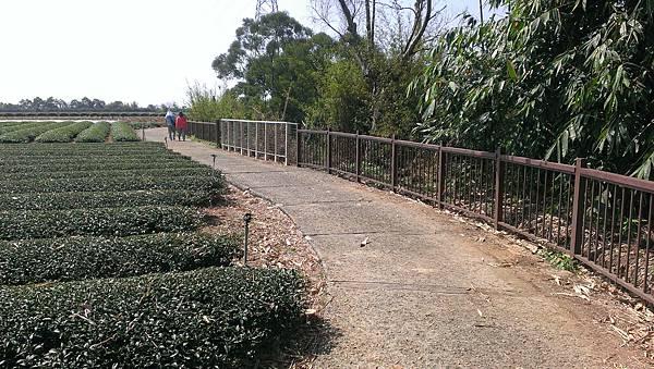 0228清水岩步道 (27).jpg