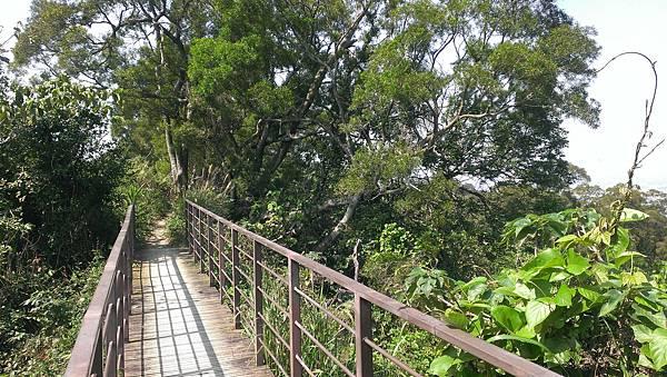 0228清水岩步道 (46).jpg