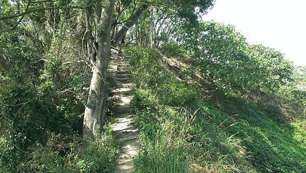 0228清水岩步道 (48).jpg