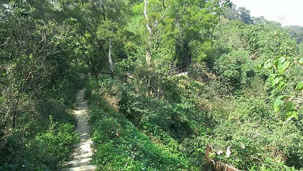 0228清水岩步道 (53).jpg