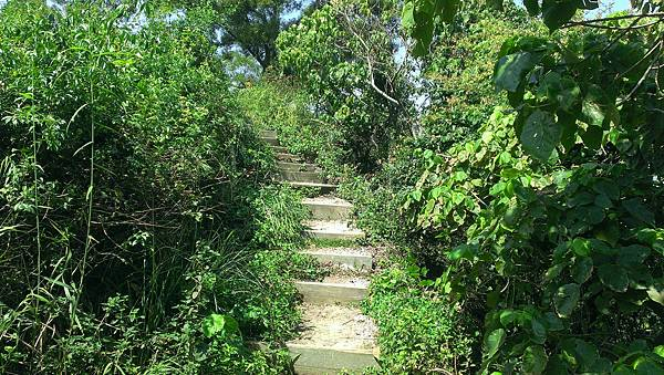 0228清水岩步道 (54).jpg