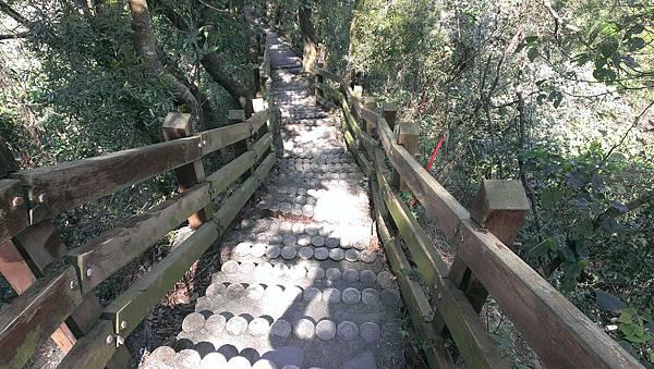 0228清水岩步道 (62).jpg