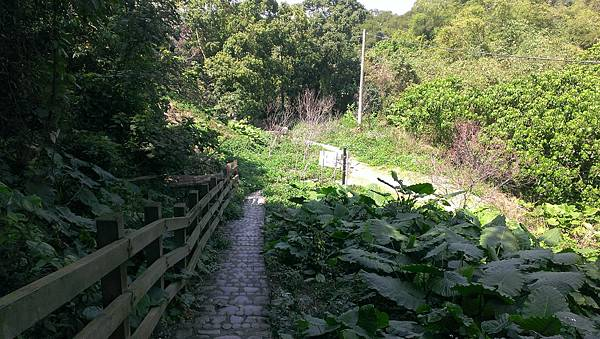 0228清水岩步道 (65).jpg