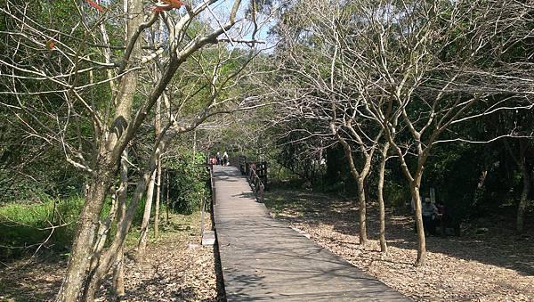 0228清水岩步道 (67).jpg