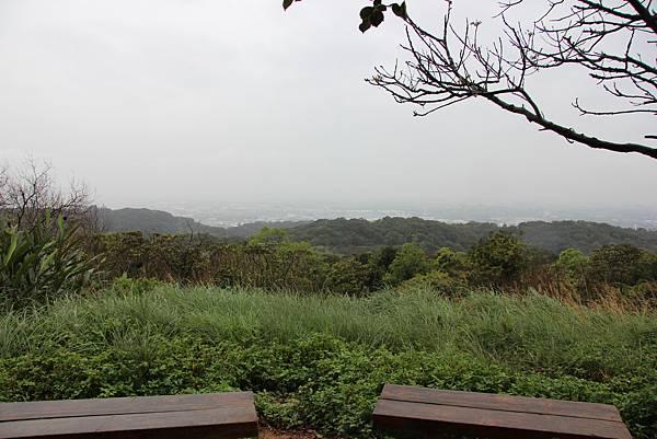 0312五酒桶山步道 (65).JPG
