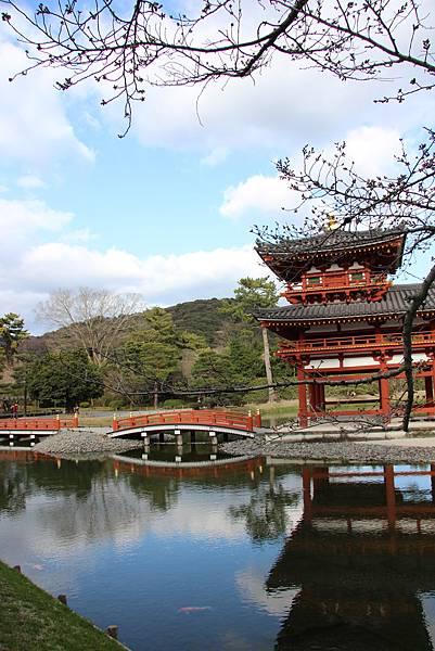 0325關西機場購票、京都、宇治平等院、宇治上神社 (51).JPG
