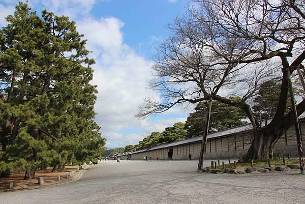 0326京都御苑賞櫻 (66).JPG