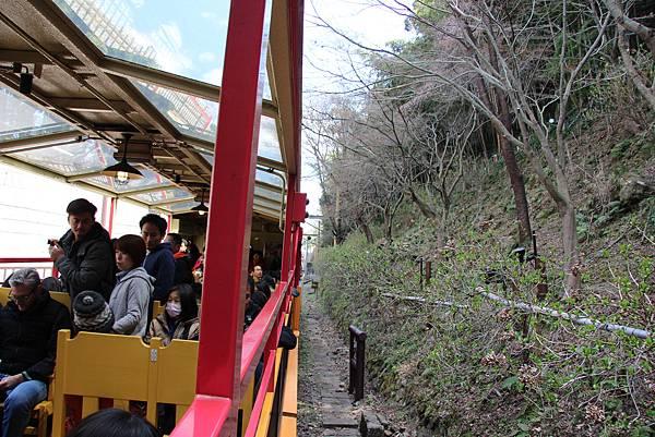 0326京都嵐山瑳峨野觀光火車、保津川遊船 (13).JPG