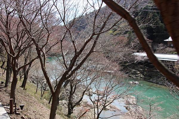 0326京都嵐山瑳峨野觀光火車、保津川遊船 (14).JPG
