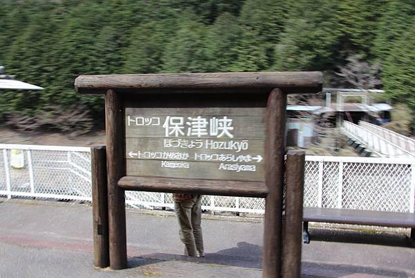 0326京都嵐山瑳峨野觀光火車、保津川遊船 (22).JPG