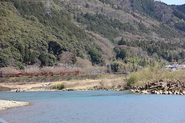 0326京都嵐山瑳峨野觀光火車、保津川遊船 (42).JPG