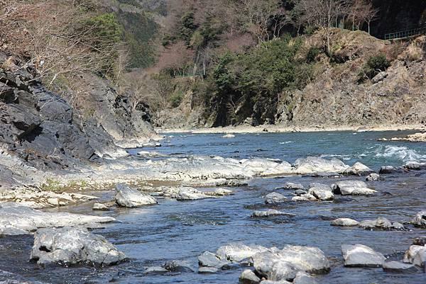 0326京都嵐山瑳峨野觀光火車、保津川遊船 (46).JPG