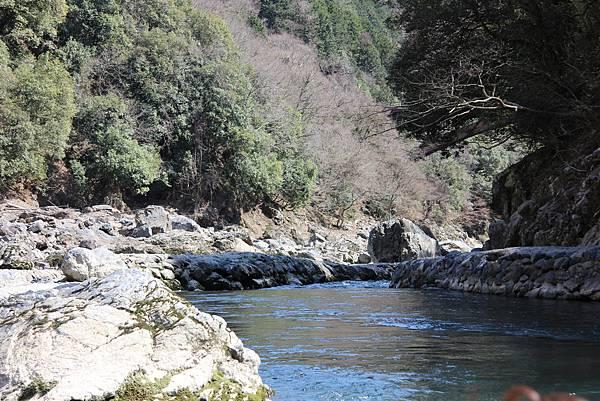 0326京都嵐山瑳峨野觀光火車、保津川遊船 (56).JPG