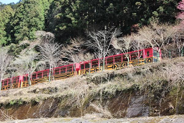 0326京都嵐山瑳峨野觀光火車、保津川遊船 (78).JPG