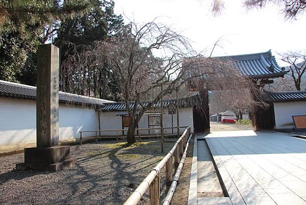 0327京都醍醐寺賞櫻 (5).JPG