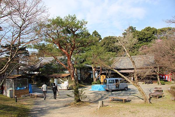 0327京都醍醐寺賞櫻 (14).JPG