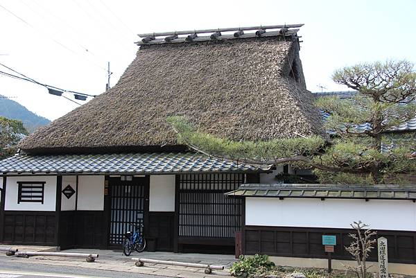 0327京都醍醐寺賞櫻 (24).JPG