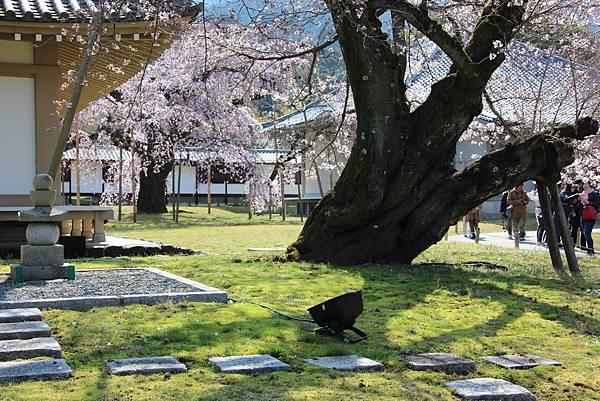 0327京都醍醐寺賞櫻 (52).JPG