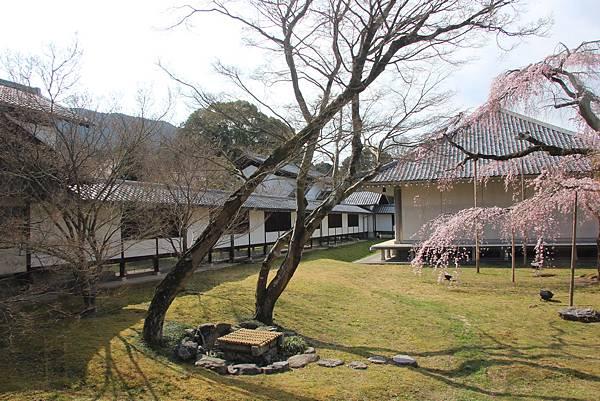 0327京都醍醐寺賞櫻 (60).JPG