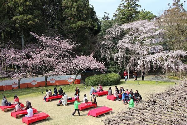 0327京都醍醐寺賞櫻 (73).JPG