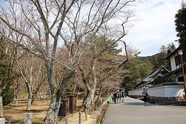 0327京都南禪寺 (6).JPG