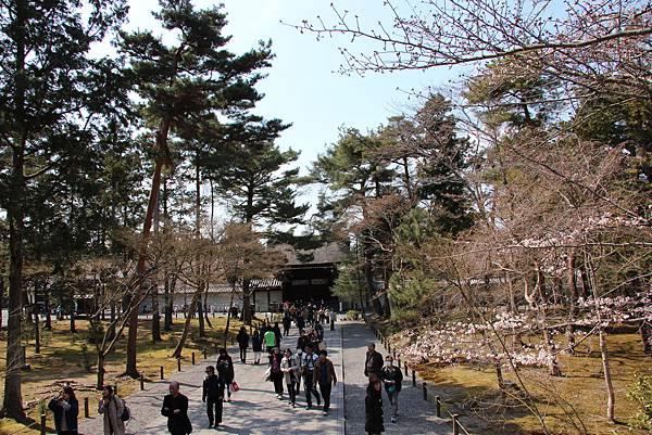0327京都南禪寺 (9).JPG