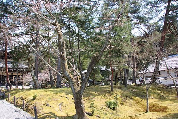 0327京都南禪寺 (13).JPG