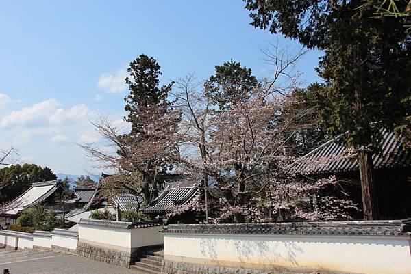 0327京都南禪寺 (29).JPG