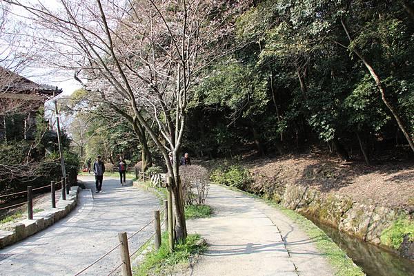 0327京都哲學之道 (8).JPG