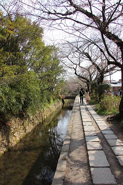 0327京都哲學之道 (22).JPG