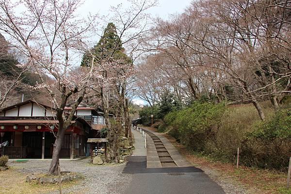 0328京都比叡山電纜車 (5).JPG