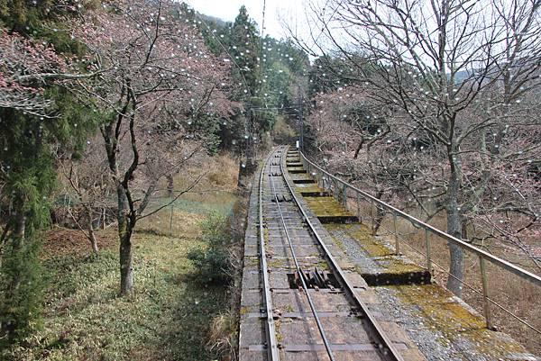 0328京都比叡山電纜車 (9).JPG