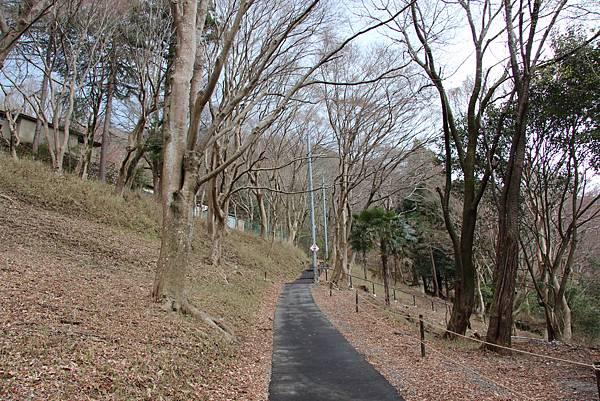 0328京都比叡山電纜車 (29).JPG